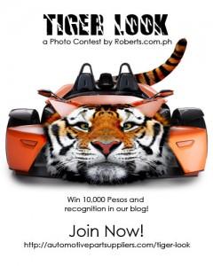 Tiger Look