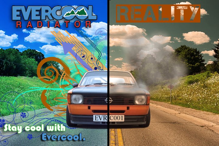 Evercool Banner Design