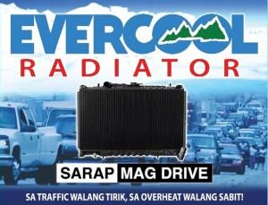 Evercool Radiator