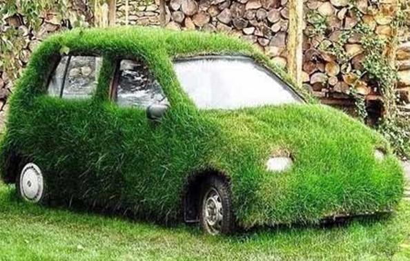 Grass Car